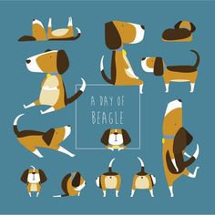 A Day of Beagle on Behance
