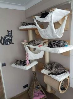 70 Brilliant DIY Cat Playground Design Ideas Your beloved cat definitely needs a. - 70 Brilliant DIY Cat Playground Design Ideas Your beloved cat definitely needs a place to play! Animal Room, Cat House Diy, Cat Tree House, Diy Cat Tree, Cat Towers, Cat Playground, Playground Design, Cat Shelves, Cat Room