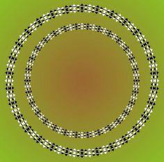 Optical illusion7