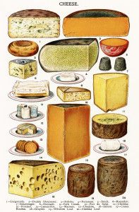 Beeton's Book of Household Management (London, - ♡ fromage ♡ cheese ♡ Käse ♡ formatge ♡ 奶酪 ♡ 치즈 ♡ ost ♡ queso ♡ τυρί ♡ formaggio ♡ チーズ ♡ kaas ♡ ser ♡ queijo ♡ сыр ♡ sýr ♡ קעז ♡ Cheese Art, Wine Cheese, Cheddar, Fromage Cheese, Cheese Shop, How To Make Cheese, Vintage Recipes, Victorian Recipes, Food Illustrations