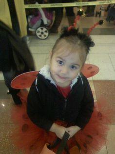 my ladybug