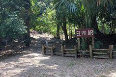 What You Should Know about El Pilar