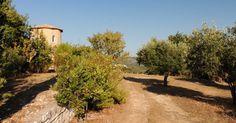 The elegant mill around nidri Elegant, Places, Travel, Classy, Voyage, Viajes, Traveling, Trips, Chic
