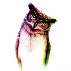 'The Wise Mr. Owl' von Isaiah K. Stephens