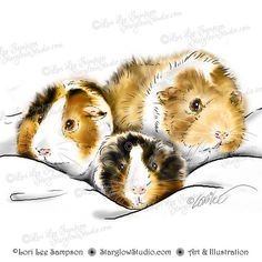 Your place to buy and sell all things handmade care tips health agility care tips obedience training training training tips pig care care care tips health Baby Guinea Pigs, Guinea Pig Toys, Guinea Pig Breeding, Digital Stamps, Clipart, Pet Birds, Art Pictures, Animals And Pets, Illustration Art