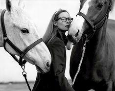 t. swinton, horses