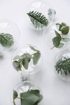 Simple glass ornaments filled with greenery