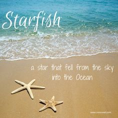 Beach Saying on CereusArt:  Starfish - A Star that fell from the sky into the ocean. Beach Pictures, Florida Quotes, Summer Quotes, Beach Quotes, Quotes About Photography, Beach Photography, Florida Beaches, Falling From The Sky, Mermaids