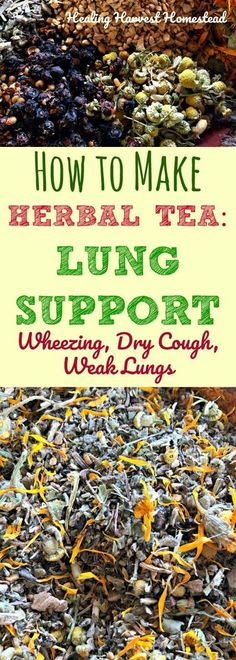Here is a recipe for an herbal tea to support your lungs. If you have asthma symptoms with slight wheezing and dry cough or just weak lungs due to illness, including that cough that just won't leave.this tea is great for use as a daily tonic tea for ch Natural Asthma Remedies, Cold Home Remedies, Natural Cures, Herbal Remedies, Natural Healing, Holistic Remedies, Natural Treatments, Dry Cough Remedies, Natural Oil