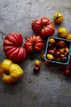 All About Heirloom Tomatoes | Williams-Sonoma Taste