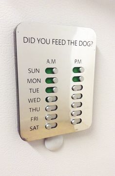 This is a shizzlin' idea! Did You Feed The Dog? Solution www. - Pet Friendly Home - This is a shizzlin' idea! Did You Feed The Dog? Solution www. Puppy Room, Dog Rooms, Ideas Geniales, Fur Babies, House Design, How To Plan, Cool Stuff, Pets, Pet Cats