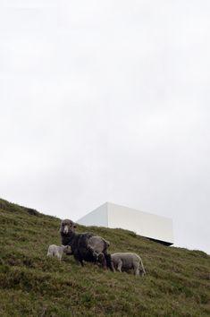 Galería de El Portal Invisible / Natura Futura Arquitectura - 10