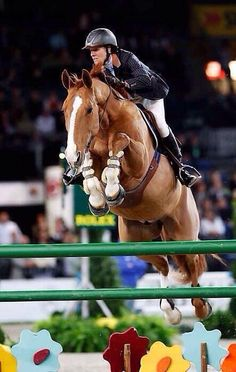 Bridleless showjumping. Respect!