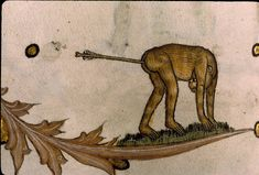 20 Bizarre Examples Of Medieval Marginalia - Yo, medieval scribes: no one's going to read the text you so painstakingly lettered if you continue to draw weird and dirty pictures in the margins.