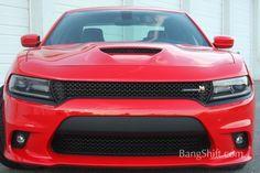 2015 Dodge Charger Scat Pack29 2015 Charger Rt, Drag Racing, Auto Racing, Dodge Charger Hellcat, Plymouth Barracuda, Chevy Nova, Dodge Dart, Lamborghini Gallardo, Car Humor