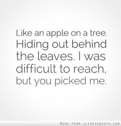 Like an apple on a tree. Hiding out behind the leaves. I was difficult to reach, but you picked me. #relationships #relationship #quotes