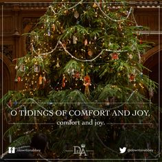 Downton Abbey Christmas Victorian Christmas Tree, Merry Christmas, Christmas Trees, Downton Abbey Series, Comfort And Joy, Embedded Image Permalink, Wonderful Time, Winter Wonderland, Photo And Video