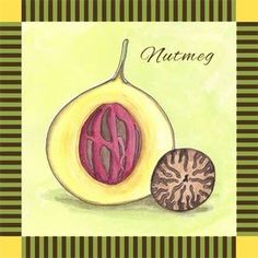 This is continuation of my Spice Series. Welcome to my information on Nutmeg! **Nutmeg is like no other taste in the world. It has an intense, sweet taste that has made it a popular and universal spice for cooking and baking. **Nutmeg is the seed inside the fruit of the nutmeg tree. The …