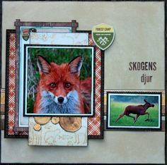 Skogens Djur Scrapbook Page by Ulrika Wandler using BoBunny Take A Hike collection