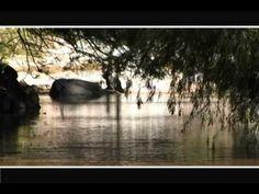 Ecopue - Agua: Río Ahuehuetla