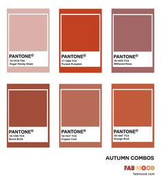 Rust color combinations for autumn wedding Find out what color looks best with rust? Beautiful color palette rust color combinations, included rust color names, dark rust color Pantone Colour Palettes, Orange Color Palettes, Warm Colour Palette, Pantone Color, Colour Schemes, Color Combinations, Paleta Pantone, Pantone Tcx, Rust Color Paint