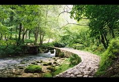 A little bridge in a mountain forest - New Aphon, Abkhazia
