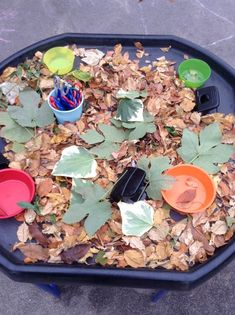 A Tuff Tray, also known as a Tuff Spot, may not look like much at first glance, but the more we got playing with it, the more it became apparent… Forest School Activities, Eyfs Activities, Nursery Activities, Autumn Activities, Autumn Eyfs, Fall Preschool, Preschool Learning, Preschool Ideas, Eyfs Classroom
