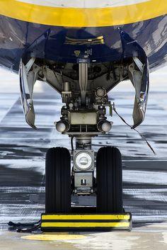 Ryanair landing gear