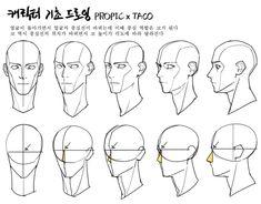 """타코작가 on Twitter: """"얼굴의 중심선 역할은 코가 된다 중심선의 위치가 바뀌면 코 높이도 각도에 맞춰 달라진다… """" Head Anatomy, Human Anatomy Drawing, Anatomy Art, Drawing Heads, Drawing Base, Drawing The Human Head, Face Drawing Reference, Art Reference Poses, Body Drawing Tutorial"""