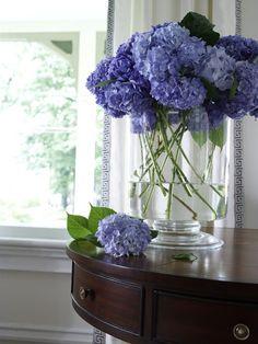 Love the color and simplicity of this hydrangea arrangement. Hortensia Hydrangea, Blue Hydrangea, Hydrangeas, Lilacs, My Flower, Fresh Flowers, Beautiful Flowers, Water Flowers, House Beautiful