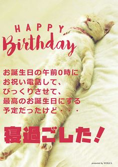 寝過ごした時に使えるお誕生日ウケる画像 Happy Birthday Wishes Cards, Birthday Cards, Birthday Greetings, Funny Birthday, Sweet Love Quotes, Animal Birthday, Sarcastic Humor, Happy Moments, Birthday Photos