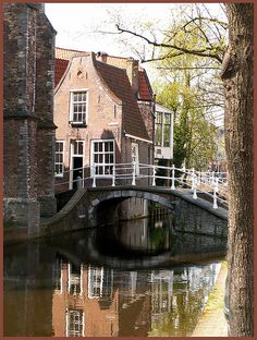 nl is located in Aalsmeer, The netherlands. Pin : Delft, The Netherlands Leiden, Holland Netherlands, Amsterdam Netherlands, Regions Of Europe, The Hague, Bruges, Utrecht, Delft, Luxembourg