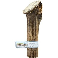 Prairie Dog Elk Antler Dog Chew Colossal