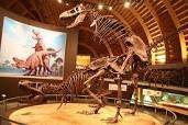 El #Museo del Jurásico de Asturias, #MUJA, un lugar para descubrir la forma de vida de los dinosaurios. Una visita muy recomendable, a unos pocos km de casa rural la Boleta