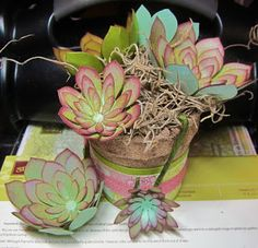 Yesterday I was experimenting with the Succulent framelits, making plants of various sizes and colors. One thing I really like to do is mak...