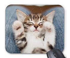 眠る子猫のマウスパッド 1:フォトパッド( 世界の猫シリーズ ) [並行輸入品] 熱帯スタジオ http://www.amazon.co.jp/dp/B014ZELWYO/ref=cm_sw_r_pi_dp_NUodwb084P2VC