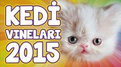 En Komik Kedi Vine Videoları 2015 - Komik Kediler