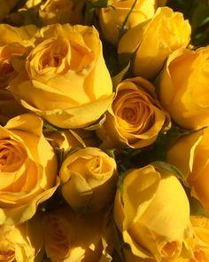Happy Friday!   -  #yellow#yellowtheme#everythingyellow#dodieyellow#aestheticyellow#yellowaesthetic#tumblryellow