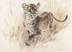 Ralph Thompson, #Leopard #Cub #wildlifeart #watercolor