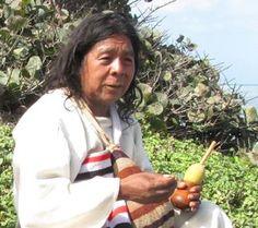 Mamo Jose Gabriel Alimako, Kogui Leader