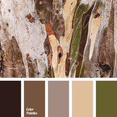 beige color, brown and green colors, color of autumn, color of fog, color of forest, color of rain, color solution, dark gray color Earthy Color Palette, 2 Colours, Style Guides, Rustic Color Palettes