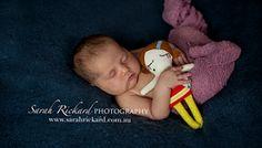 Eclectic Critters   Sarah Rickard Photography, Lismore Photographer  #sarahrickardphotography #lismorenewbornphotographer #newborn #newborns #newbornposing #baby #babyposing