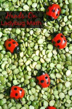 Hands-On Ladybug Math Ideas for Kids-Counting, Addition, Comparing. good for rotation maths - garden or minibeast theme Math Activities For Kids, Games For Toddlers, Math For Kids, Preschool Learning, Kindergarten Math, Fun Math, Toddler Preschool, Math Games, Teaching Math