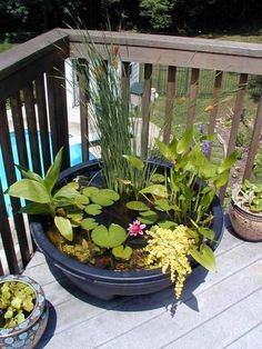 Create a calming oasis on your patio with an easy, mini ponds. You don't even need fancy pumps—just water. Water adds a new dimension to any garden