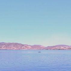 Mejor despedida no nos pudimos encontrar!!! Wow!! GRACIAS!!!! 🐬🐬🐬🐬🐬🐬 #delfines #lapaz #bajacaliforniasur #travelingram #traveler #traveling #instatraveling #tourist #tourism #visiting #mytravelgram #traveltheworld #travelpics #travellife #traveldiaries #travelphoto #photography #photographysouls #photographers