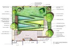 Pacific Heights Residence by Andrea Cochran Landscape Architecture Landscape Design Plans, Landscape Edging, Landscape Architecture, Landscape Drawings, Cool Landscapes, Best Landscape Photography, Minimalist Landscape, Contemporary Landscape, Raised Bed Garden Design