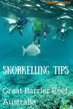 Snorkelling along the Great Barrier Reef | Traveldudes.org