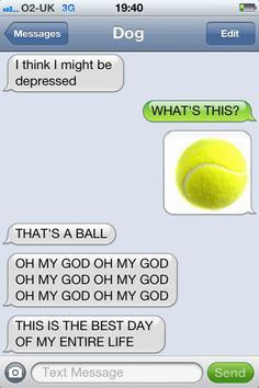 Hilarious Texts from Dog