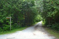 Sibbald Point Provincial Park, East Campground, Camping in Ontario Parks Ontario Parks, Sidewalk, Country Roads, Canada, Camping, Summer, Walkway, Campsite, Summer Time
