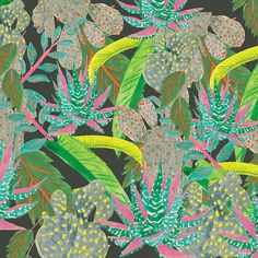 Night Forest - Jessica Singh - illustrator